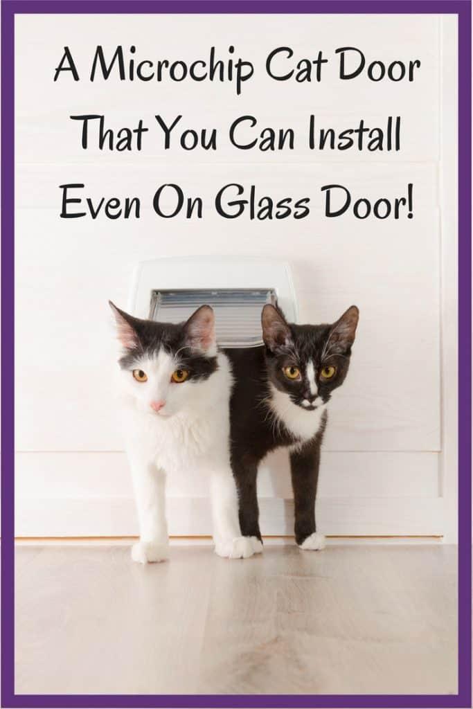 Cat Door In Window Best Microchip Cat Flap Door Review Happy