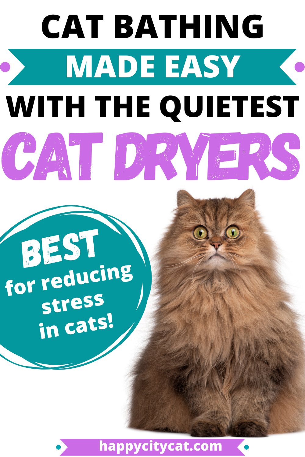Quiet Cat Dryer – Designed To Reduce Stress In Your Cat
