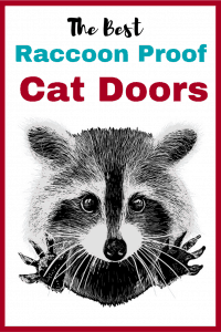 Cat Door Raccoon Proof