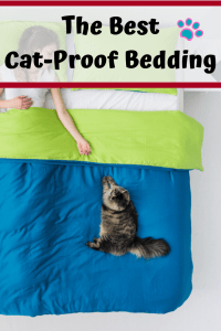 The Best Cat Proof Bedding