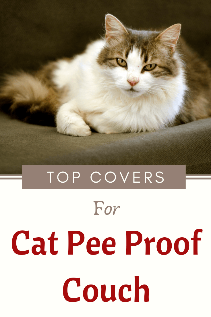 Waterproof Couch Cover For Cats