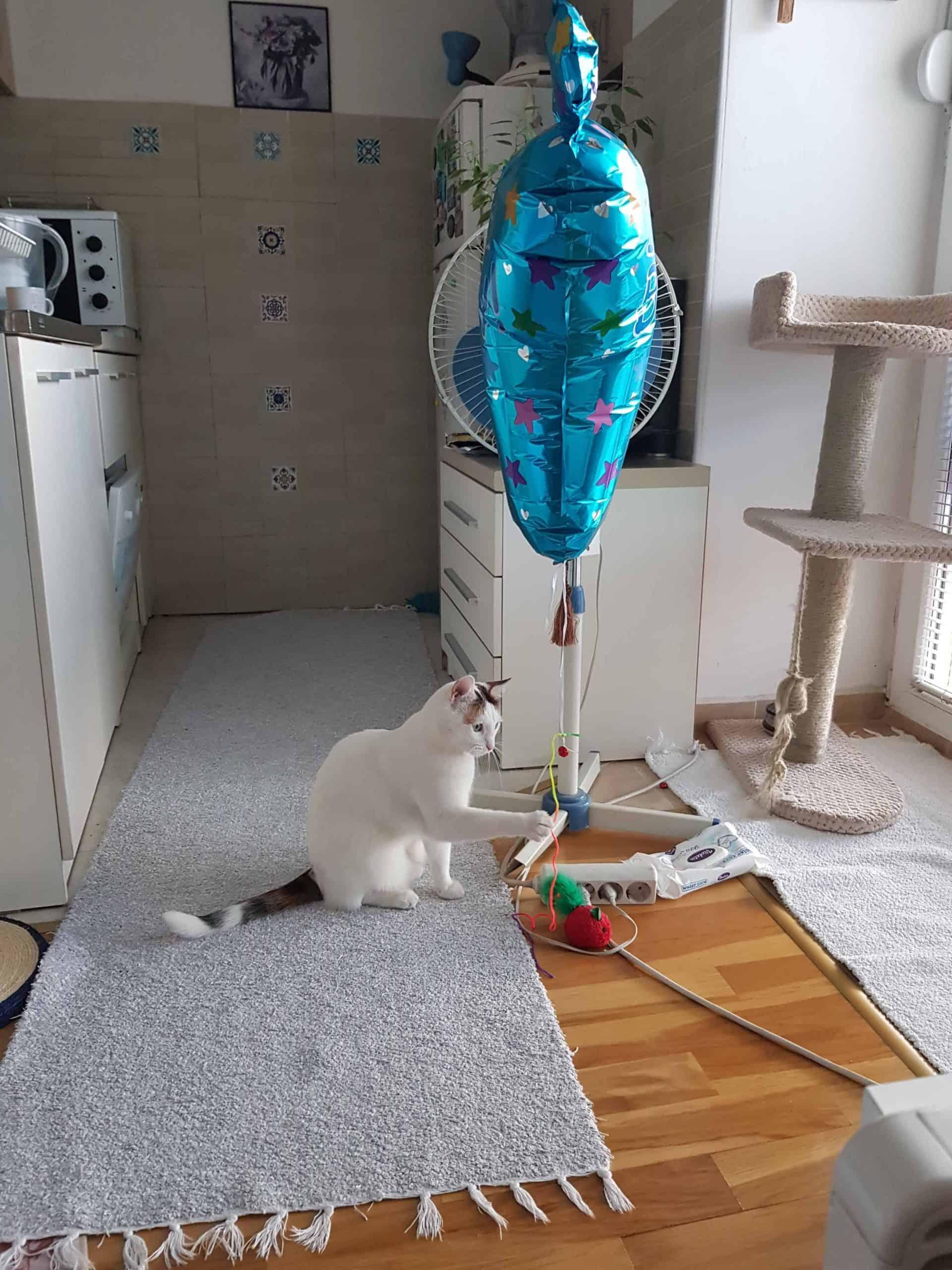 helium balloon toy
