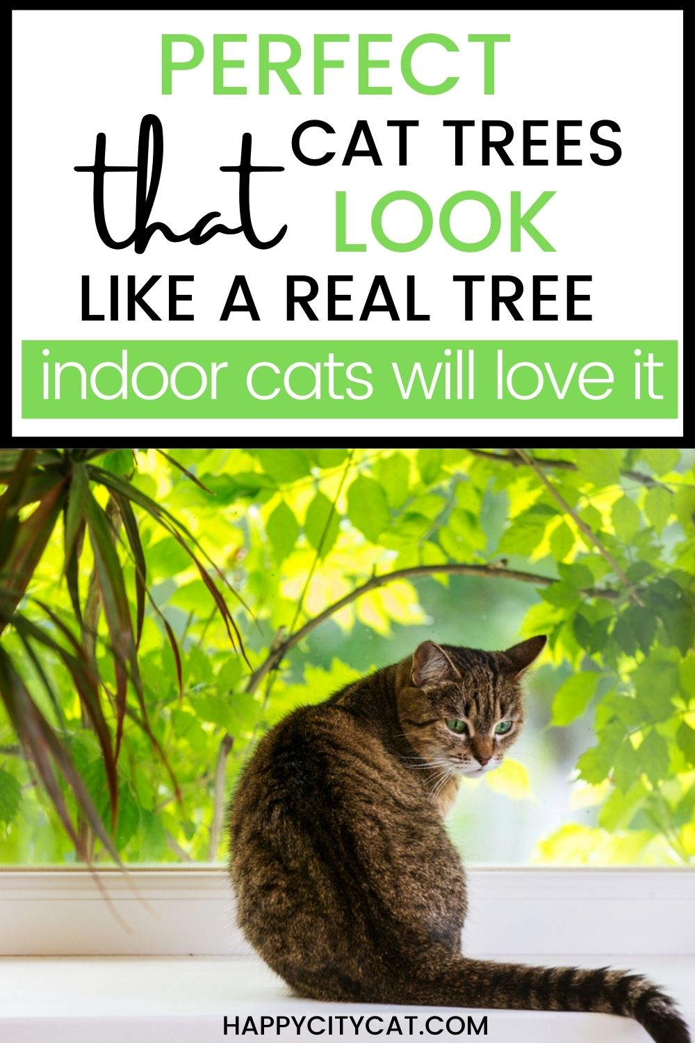 Cat Tree That Looks Like A Real Tree - Great For Indoor Cats