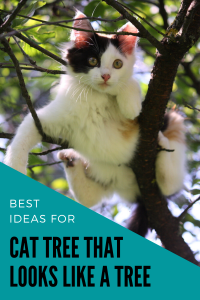 Cat Tree That Looks Like A Real Tree