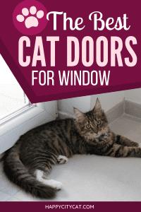 Cat Door For Vertical Window