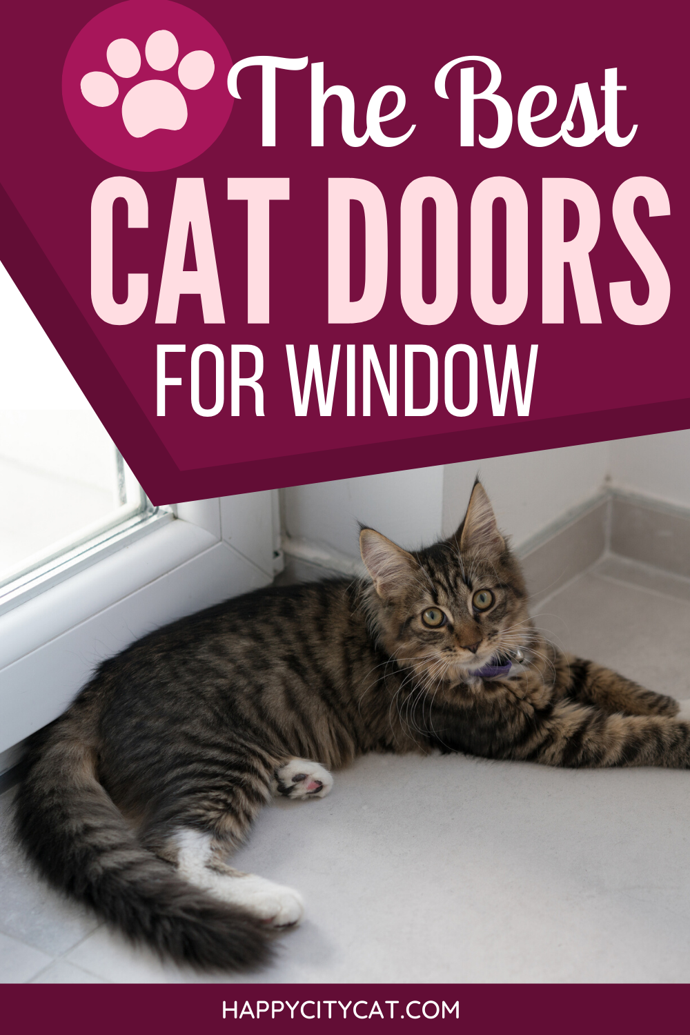 Cat Door For Vertical Window