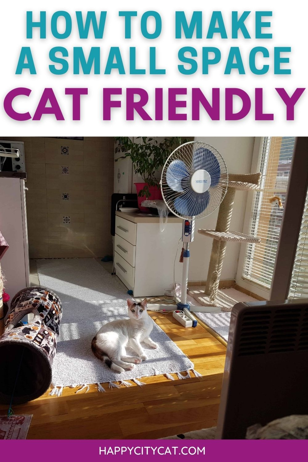 how to make a small space cat-friendly