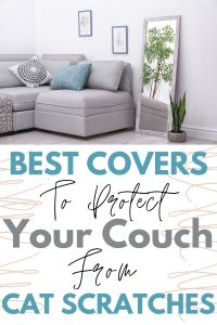 Scratch Proof Couch Cover