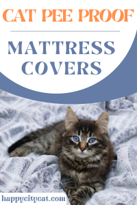 Cat Pee Proof Mattress Cover